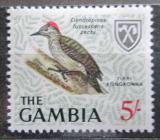 Poštovní známka Gambie 1966 Dendropicus fuscescens Mi# 220