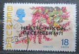 Poštovní známka Bermudy 1971 Antigonon leptolepus přetisk Mi# 279