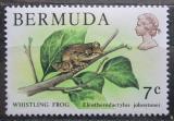 Poštovní známka Bermudy 1978 Hvízdalka Johnstonova Mi# 355