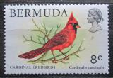 Poštovní známka Bermudy 1978 Kardinál červený Mi# 356