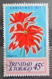 Poštovní známka Trinidad a Tobago 1977 Vánoce, pryšec nádherný Mi# 360