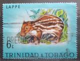 Poštovní známka Trinidad a Tobago 1971 Paka nížinná Mi# 281