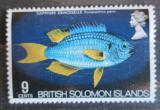 Poštovní známka Brit. Šalamounovy ostrovy 1972 Pomacentrus pavo Mi# 225