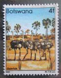 Poštovní známka Botswana 1982 Pštros dvouprstý Mi# 302