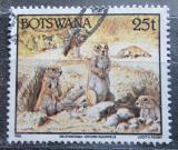 Poštovní známka Botswana 1992 Veverka kapská Mi# 525