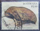 Poštovní známka Botswana 2007 Houby Mi# 848