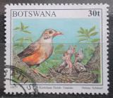 Poštovní známka Botswana 1997 Drozd rudozobý Mi# 634