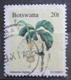 Poštovní známka Botswana 1996 Vánoce, baobab prstnatý Mi# 615