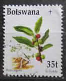 Poštovní známka Botswana 1998 Vánoce, ficus ingens Mi# 669