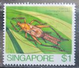 Poštovní známka Singapur 1985 Homoeoxipha lycoides Mi# 471