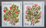 Poštovní známky Island 1984 Květiny Mi# 619-20