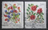 Poštovní známky Norsko 1995 Lesní plody Mi# 1174-75