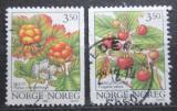 Poštovní známky Norsko 1996 Lesní plody Mi# 1204-05
