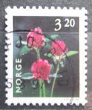 Poštovní známka Norsko 1997 Jetel luční Mi# 1230