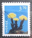 Poštovní známka Norsko 1997 Podběl lékařský Mi# 1231