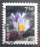 Poštovní známka Norsko 1998 Koniklec německý Mi# 1273