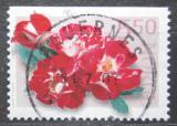 Poštovní známka Norsko 2001 Růže Mi# 1392 Do