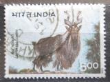 Poštovní známka Indie 1996 Koza šrouborohá Mi# 1502