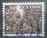 Poštovní známka Cejlon 1954 Kaučukovníky Mi# 271