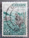 Poštovní známka Cejlon 1954 Sběr čaje Mi# 273