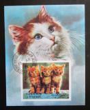 Poštovní známka Šardžá 1972 Koťata Mi# Block 120