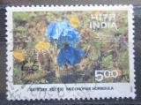 Poštovní známka Indie 1996 Meconopsis horridula Mi# 1504