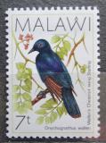 Poštovní známka Malawi 1988 Špaček hvízdavý Mi# 504