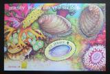 Poštovní známka Jersey, Velká Británie 2006 Mořská fauna, hologram Mi# Block 55
