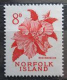 Poštovní známka Norfolk 1960 Ibišek čínská růže Mi# 30