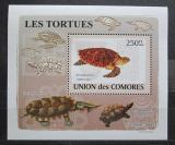 Poštovní známka Komory 2009 Želvy neperf. DELUXE Mi# 2178 B Block