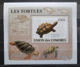 Poštovní známka Komory 2009 Želvy neperf. DELUXE Mi# 2180 B Block