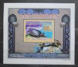 Poštovní známka Guinea 2009 Želvy DELUXE Mi# 6398 Block