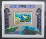 Poštovní známka Guinea 2009 Želvy DELUXE Mi# 6399 Block