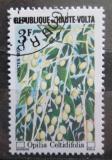Poštovní známka Horní Volta 1977 Opilia celtidifolia Mi# 672