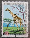 Poštovní známka Kamerun 1979 Žirafa Mi# 905