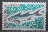 Poštovní známka Kamerun 1968 Polydactylus quadrifilis Mi# 550 Kat 5.50€