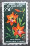 Poštovní známka Kamerun 1967 Hvězdník Mi# 517
