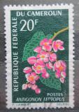 Poštovní známka Kamerun 1966 Antigonon mexický Mi# 365