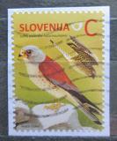 Poštovní známka Slovinsko 2014 Poštolka jižní Mi# 1061