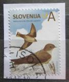 Poštovní známka Slovinsko 2014 Břehule skalní Mi# 1058