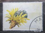 Poštovní známka Slovinsko 2001 Včela Mi# 351