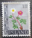 Poštovní známka Island 1964 Pryskyřník ledovcový Mi# 382