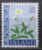 Poštovní známka Island 1964 Dryádka osmiplátečná Mi# 381
