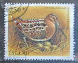 Poštovní známka Island 1995 Bekasina otavní Mi# 834 Kat 7.50€