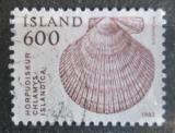 Poštovní známka Island 1982 Mušle Mi# 577
