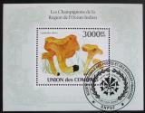 Poštovní známka Komory 2009 Houby Mi# Block 566 Kat 15€