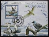 Poštovní známka Komory 2009 Ptáci Mi# Block 523 Kat 15€