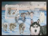 Poštovní známka Guinea-Bissau 2009 Psi Aljašky a Sibiře Mi# Block 727 Kat 13€