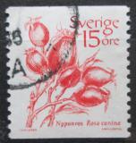 Poštovní známka Švédsko 1983 Šípková růže Mi# 1221