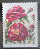 Poštovní známka Švédsko 1994 Růže Mi# 1825 Du